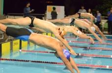 中大游泳精英比賽 2016